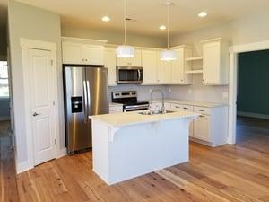 Vista Developers' Kitchen Design