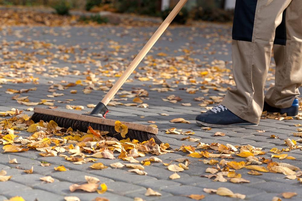 Fall Lawn Maintenance