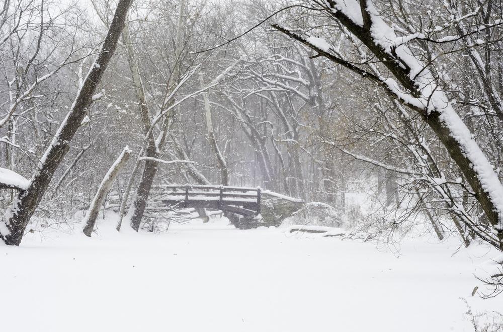 Winter Weather Emergencies